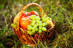 Basket full of fruits Stock Photo