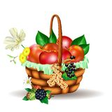 Basket full of fruits Royalty Free Stock Photography