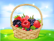 Basket full of fruits on green meadow Stock Photo