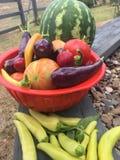 Basket full of harvest vegetables from the garden Stock Photos