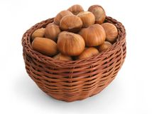 Basket full of hazelnuts. Ripe hazelnuts filling a wattle basket stock photo