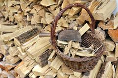 Basket full of kindling. Kindling  in wicker basket on pile of logs Stock Photo