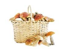 Basket full of mushrooms over white background Royalty Free Stock Photography