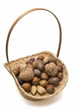 Basket full of nuts. Stock Image