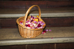 Basket full of petals Royalty Free Stock Images