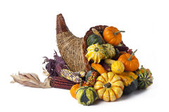 Basket full of pumkins Royalty Free Stock Photography