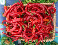 Basket full of Red Peppers Stock Photo