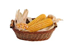 Basket full of straw and corn cobs Stock Image