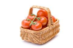 Basket full of tomatoes Stock Image