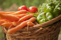 Basket full of vegetables Royalty Free Stock Images