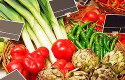 Basket full of vegetables. Royalty Free Stock Photos