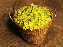 Basket full of yellow primrose blossoms. Spring harvest for healthy herbal tee - primrose blossoms in a straw basket Royalty Free Stock Photography
