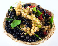 Basket of garden berries Royalty Free Stock Photography