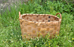 Basket in the garden Stock Photo