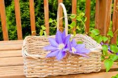 Basket for garden flowers Stock Photo