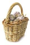 Basket of garlic on white Stock Image