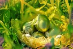 Basket of golden easter eggs on green grass Stock Photo