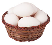 Basket with goose eggs on a white background Stock Image