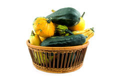 Basket with gourds Royalty Free Stock Photo