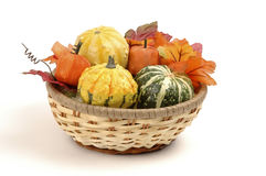 Basket of Gourds Stock Photo