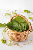 Basket with grape leaves Royalty Free Stock Photo