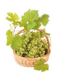 Basket with grapes. The basket filled by green grapes costs on a table Stock Image