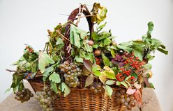 Basket with grapes and fall leaves. Stock Photography