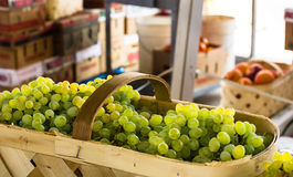Basket of Grapes Royalty Free Stock Photo