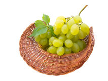 Basket with grapes isolated on white Stock Image