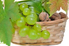 Basket of grapes and nuts Stock Photography