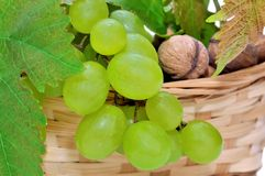 Basket of grapes and nuts Stock Photos