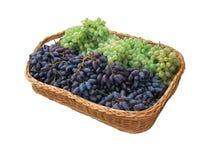 Basket of grapes. Royalty Free Stock Image