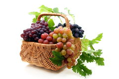 Basket of grapes on a white background. Stock Photography