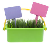 Basket of Grass with Blank Signs Royalty Free Stock Photo
