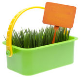 Basket of Grass with Vibrant Orange Blank Sign Royalty Free Stock Photos