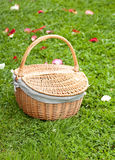 Basket on the green grass with the rose petals. Beautiful basket on the green grass and red rose's leafs Royalty Free Stock Image