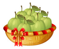 A basket of guavas Royalty Free Stock Photo