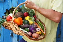Basket in hand Stock Image