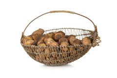 Basket of harvested organic potatoes Royalty Free Stock Image
