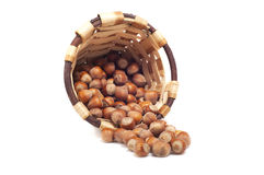 Basket of hazelnut, autumn fruits,  Royalty Free Stock Photography