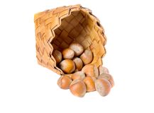 A basket of hazelnuts Royalty Free Stock Photography