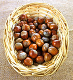 Basket of hazelnuts Stock Photo