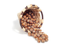 Basket of hazelnuts, autumn fruits,  on white Royalty Free Stock Photos