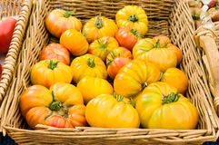 Basket of heirloom tomatoes at the market Royalty Free Stock Image