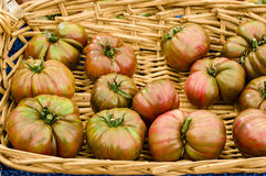 Basket of heirloom tomatoes at the market Royalty Free Stock Photo