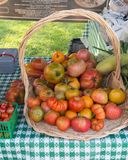 Basket of heirloom Tomatoes Royalty Free Stock Photos