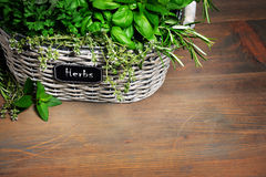 Basket with herbs stock images