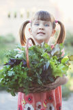 Basket with herbs. Little girl holding wicker basket with fresh herbs Royalty Free Stock Image