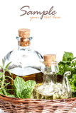Herbs and olive oil Stock Image