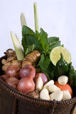 Basket of herbs and vegetables Stock Image